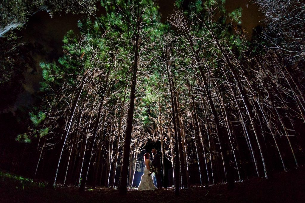 capturing your perfect wedding day Steven Miller Photography