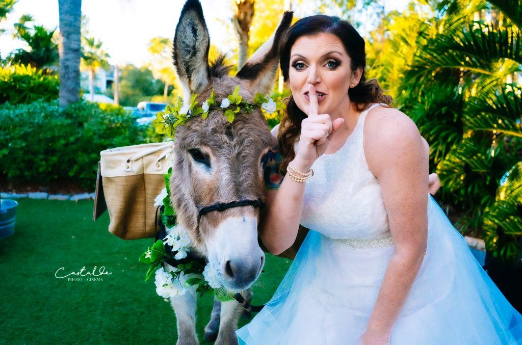 weddings animals